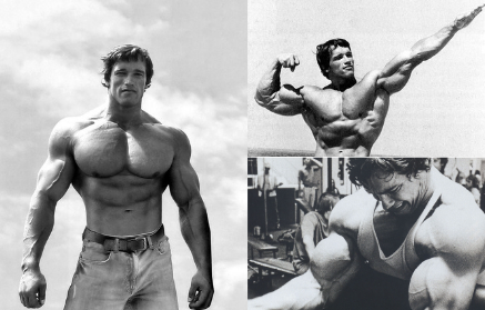 Arnold Schwarzenegger - training, diet and motivation of the ...