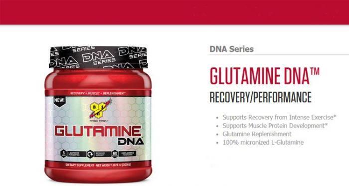 309 g BSN DNA Series Glutamine Recovery Powder